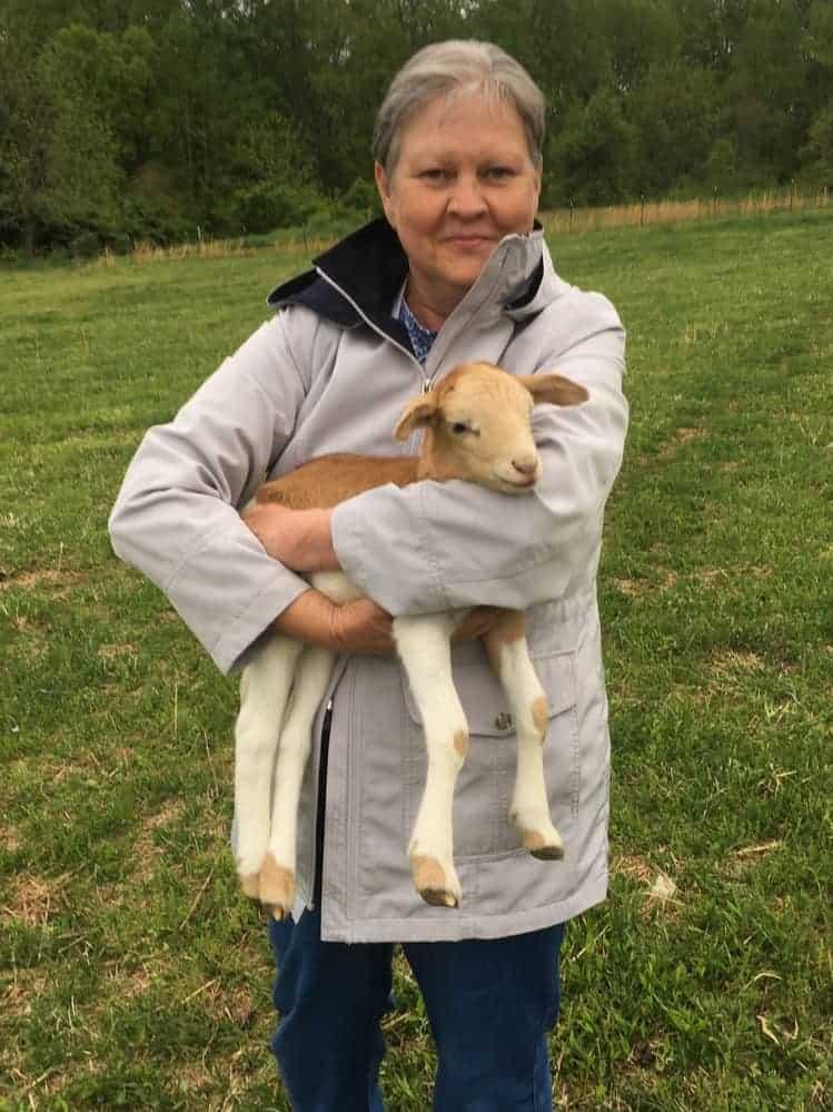 Christian Passover lamb